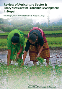 Review of Agriculture Sector & Policy Measures for Economic Develpoment in Nepal