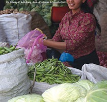 Doing Business in Nepal: Ground Realities
