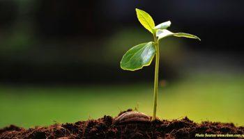 Building Entrepreneurship